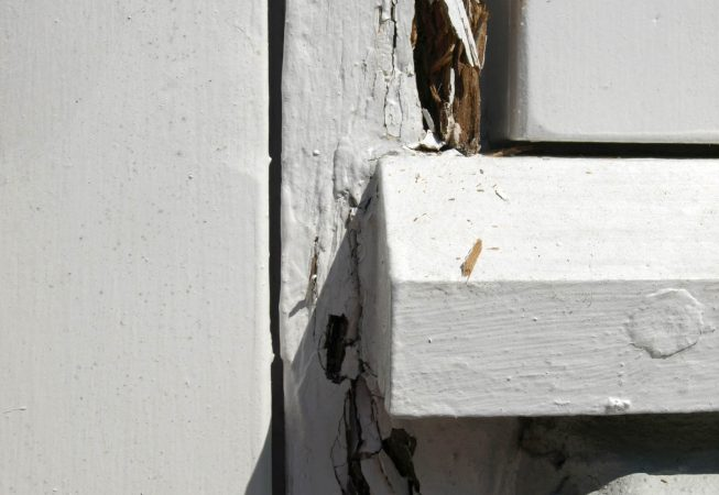 Linoliemalet vindue
