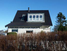 Kvist vinduer kernetræ Højbjerg